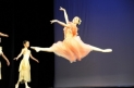 "International Ballet Competition ""Shelkunchik"""